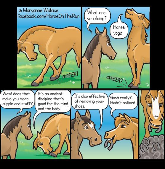 Horse Yoga - square - Horse on the Run comics